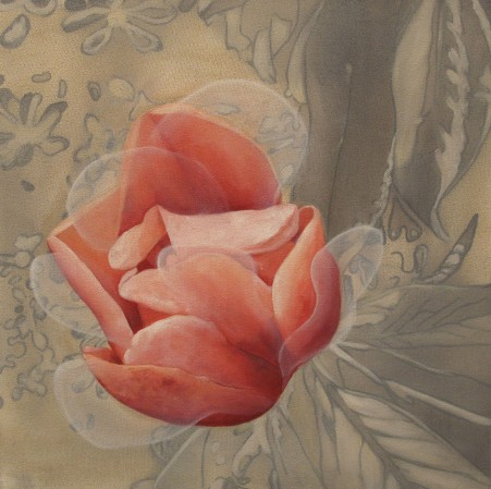 Magnolia 8